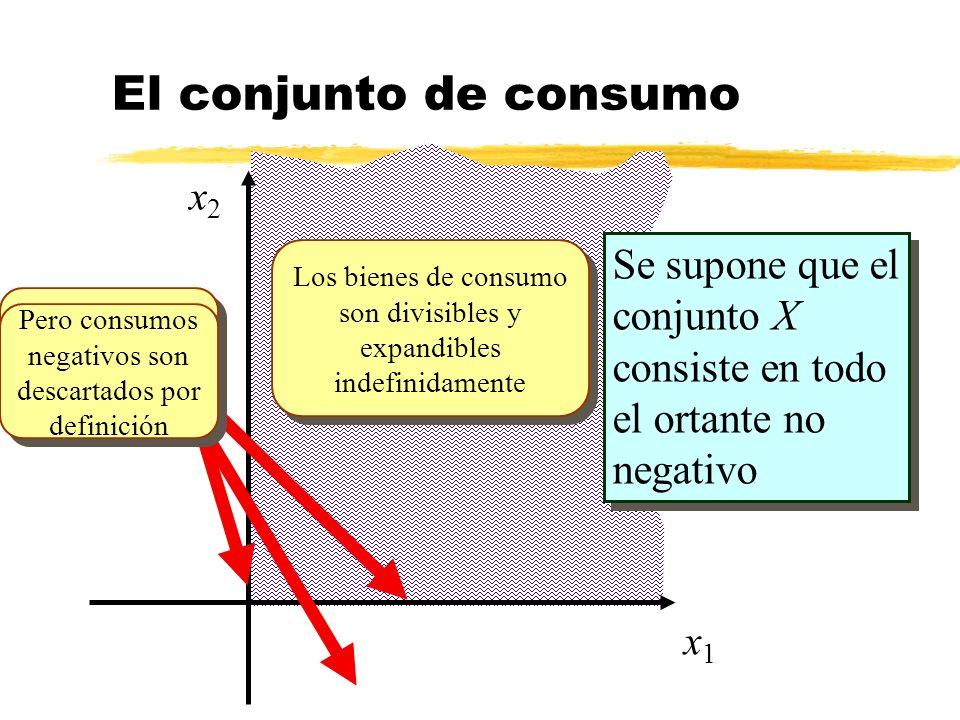 x1x1 x2x2 Se supone que el conjunto X consiste en todo el ortante no negativo Consumos cero tienen sentido económico Los bienes de consumo son divisib
