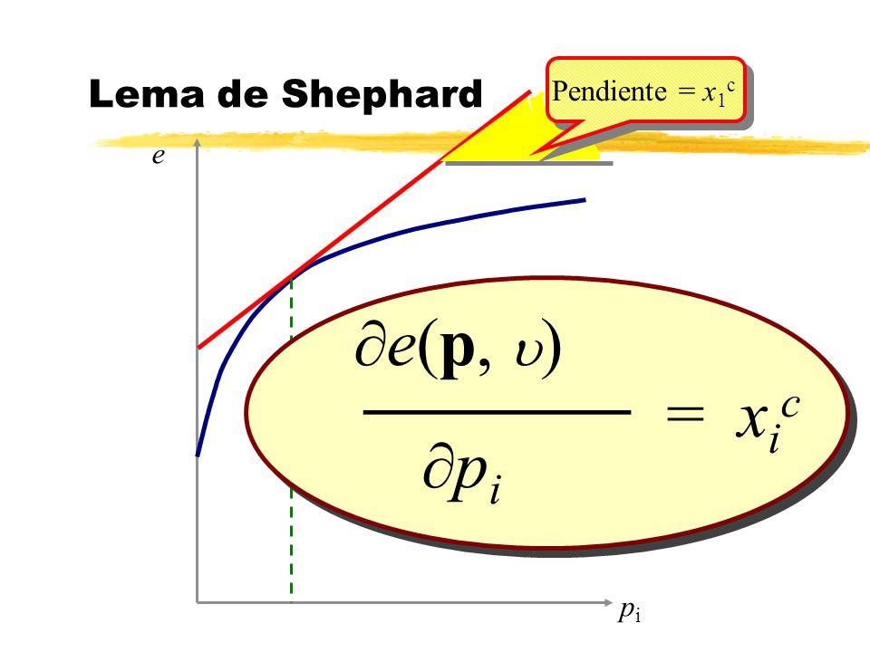 e(p, ) p i = x i c _______ pipi e Lema de Shephard Pendiente = x 1 c