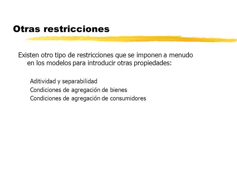 Otras restricciones Existen otro tipo de restricciones que se imponen a menudo en los modelos para introducir otras propiedades: Aditividad y separabi