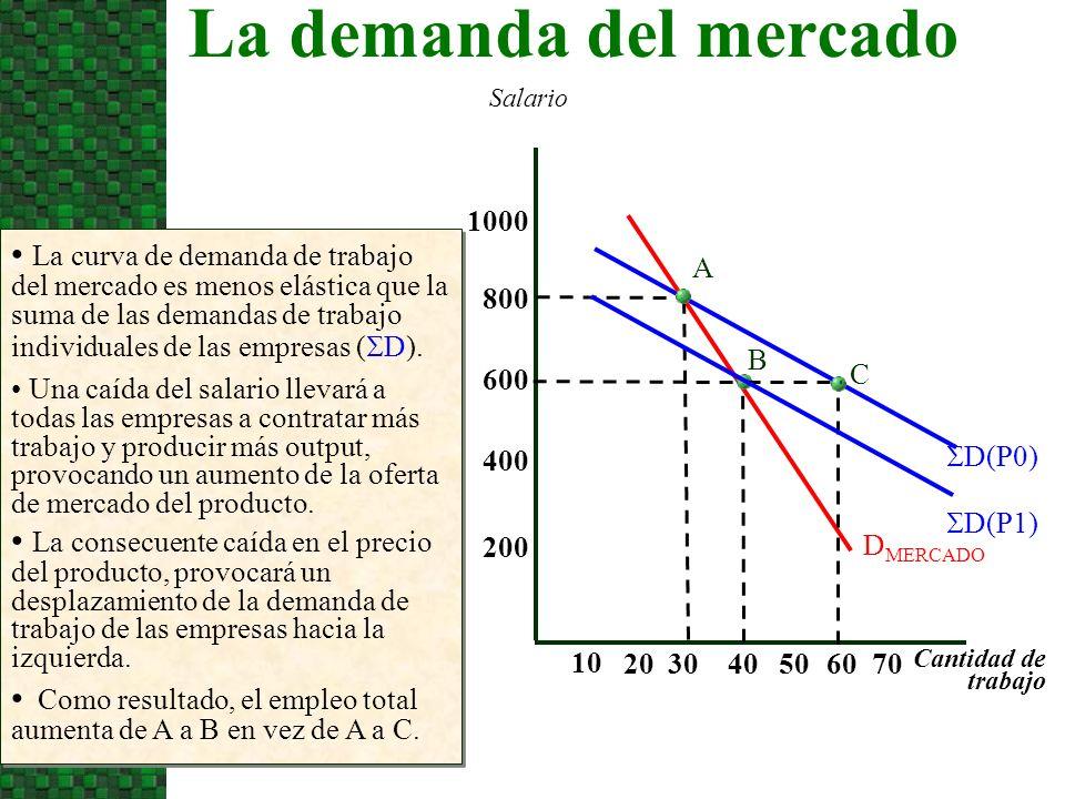 La curva de demanda de trabajo del mercado es menos elástica que la suma de las demandas de trabajo individuales de las empresas ( D). Salario Cantida