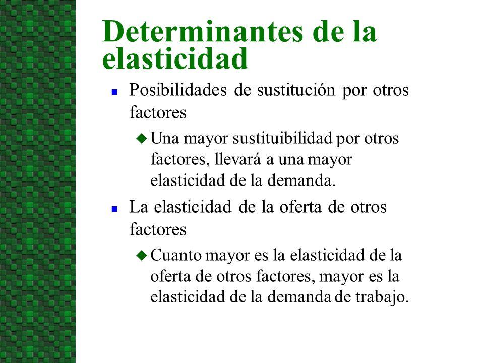 n Posibilidades de sustitución por otros factores u Una mayor sustituibilidad por otros factores, llevará a una mayor elasticidad de la demanda. n La