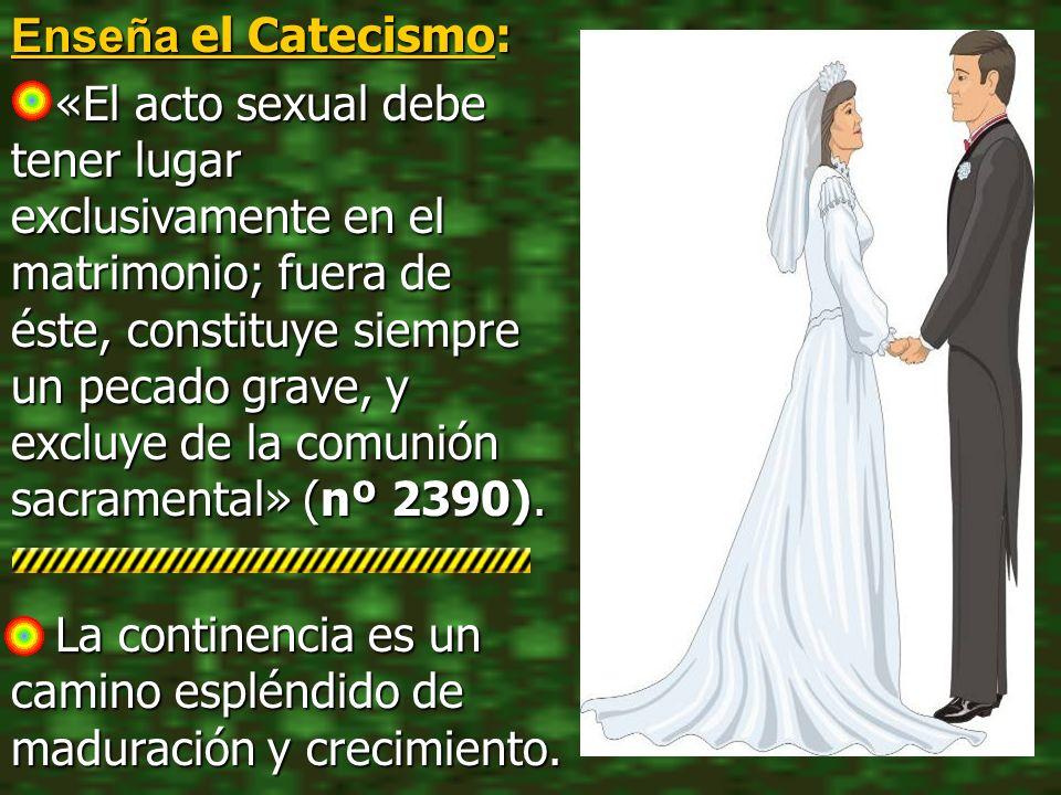 Enseña el Catecismo: «El acto sexual debe tener lugar exclusivamente en el matrimonio; fuera de éste, constituye siempre un pecado grave, y excluye de