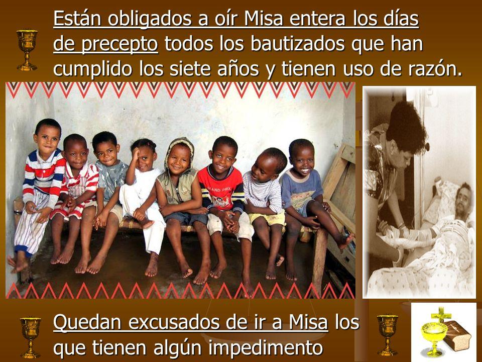 Están obligados a oír Misa entera los días de precepto todos los bautizados que han cumplido los siete años y tienen uso de razón. Quedan excusados de