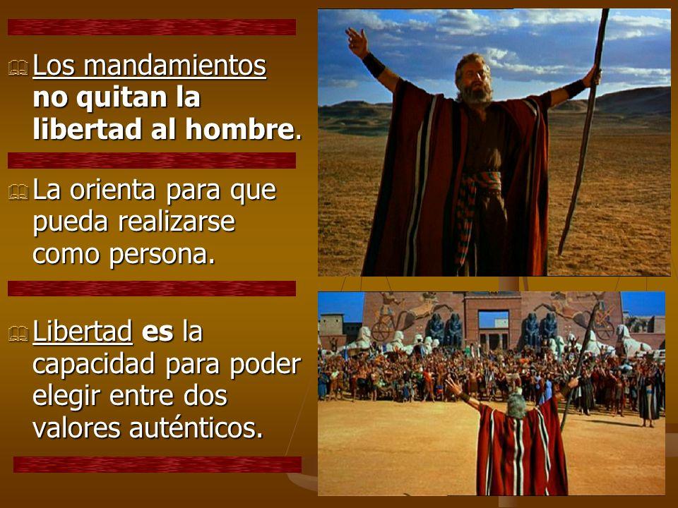 Los mandamientos no quitan la libertad al hombre. Los mandamientos no quitan la libertad al hombre. La orienta para que pueda realizarse como persona.