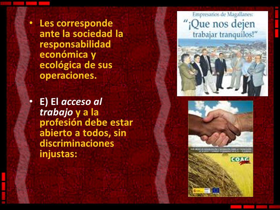 Les corresponde ante la sociedad la responsabilidad económica y ecológica de sus operaciones. E) El acceso al trabajo y a la profesión debe estar abie