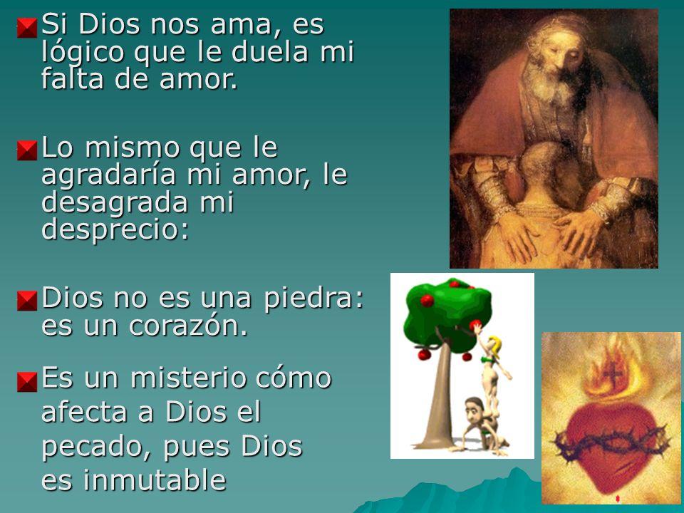 Si Dios nos ama, es lógico que le duela mi falta de amor. Si Dios nos ama, es lógico que le duela mi falta de amor. Lo mismo que le agradaría mi amor,