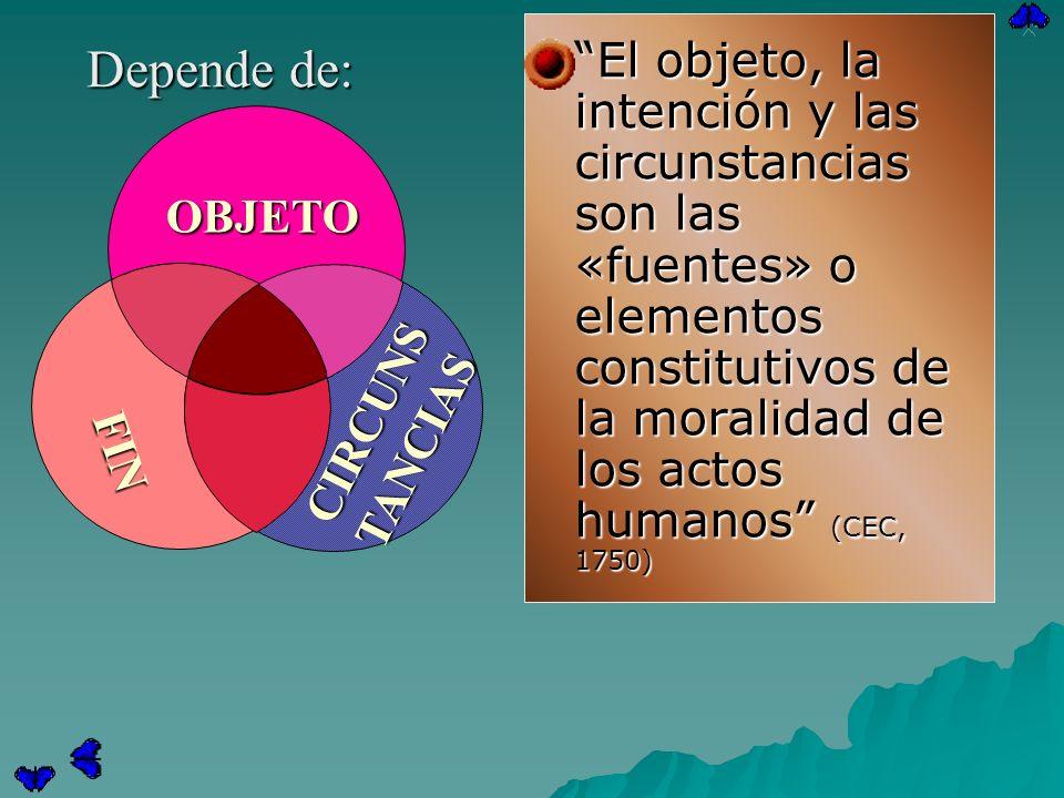 El objeto, la intención y las circunstancias son las «fuentes» o elementos constitutivos de la moralidad de los actos humanos (CEC, 1750) El objeto, l