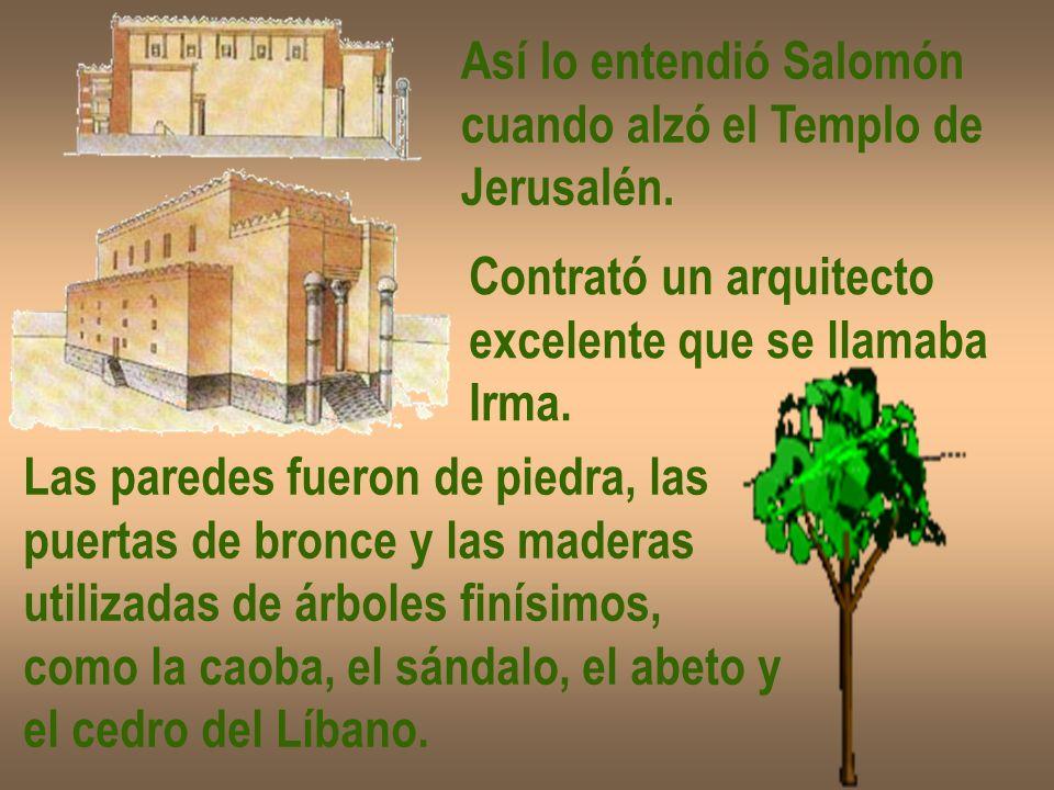 Así lo entendió Salomón cuando alzó el Templo de Jerusalén. Contrató un arquitecto excelente que se llamaba Irma. Las paredes fueron de piedra, las pu