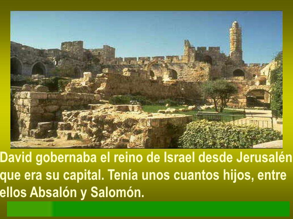 David gobernaba el reino de Israel desde Jerusalén que era su capital. Tenía unos cuantos hijos, entre ellos Absalón y Salomón.