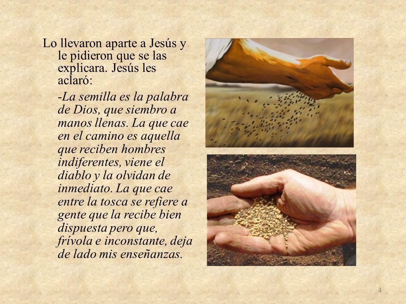 Lo llevaron aparte a Jesús y le pidieron que se las explicara. Jesús les aclaró: -La semilla es la palabra de Dios, que siembro a manos llenas. La que