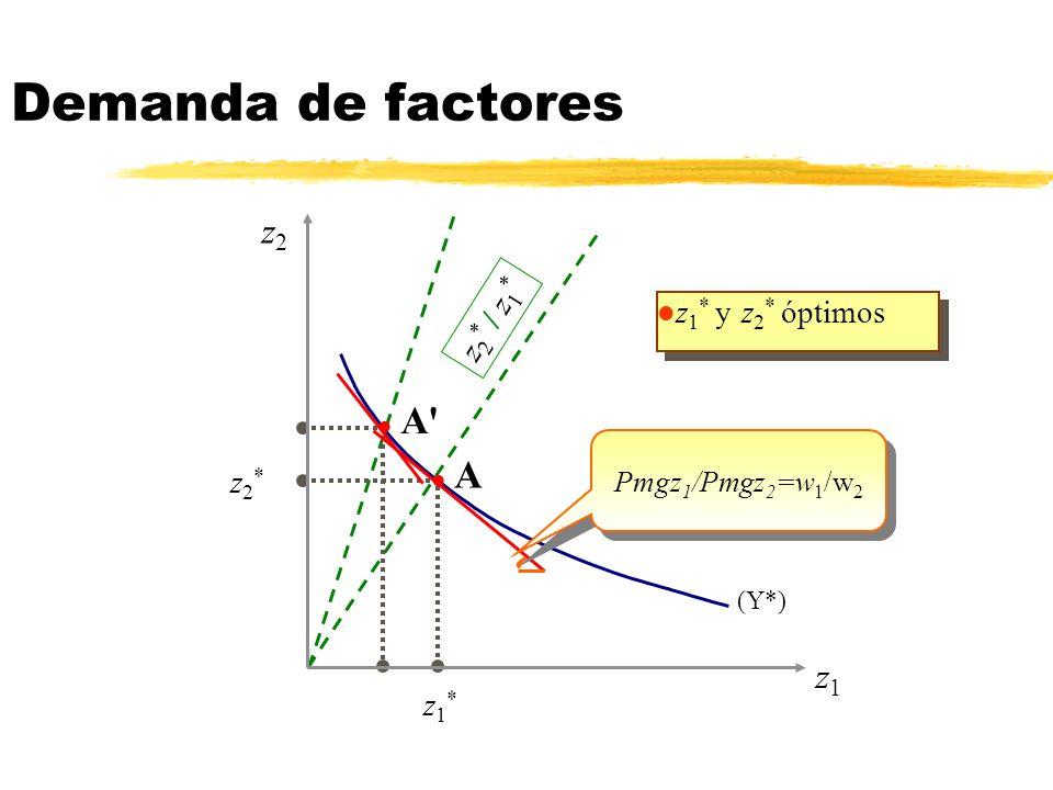 (Y*) Demanda de factores l z 1 * y z 2 * óptimos z1z1 z2z2 l A l A' Pmgz 1 /Pmgz 2 =w 1 /w 2 z 2 * / z 1 * z1*z1* z2*z2*
