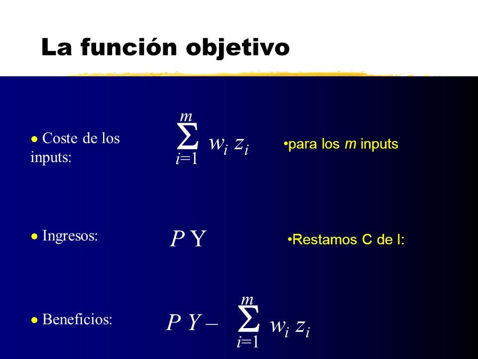 Y* = Y s (P,w 1,...,w m ) z 1 * = z 1 d (P,w 1,...,w m ).........