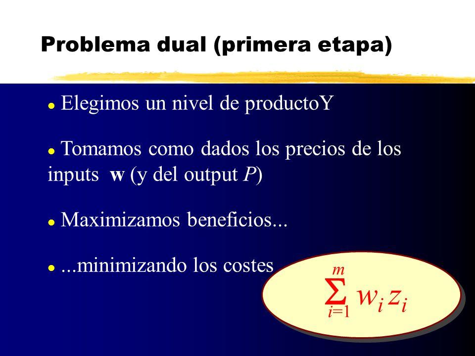 l Elegimos un nivel de productoY l Tomamos como dados los precios de los inputs w (y del output P) l Maximizamos beneficios... l...minimizando los cos