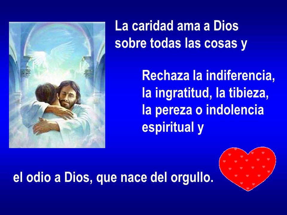 La caridad ama a Dios sobre todas las cosas y Rechaza la indiferencia, la ingratitud, la tibieza, la pereza o indolencia espiritual y el odio a Dios,