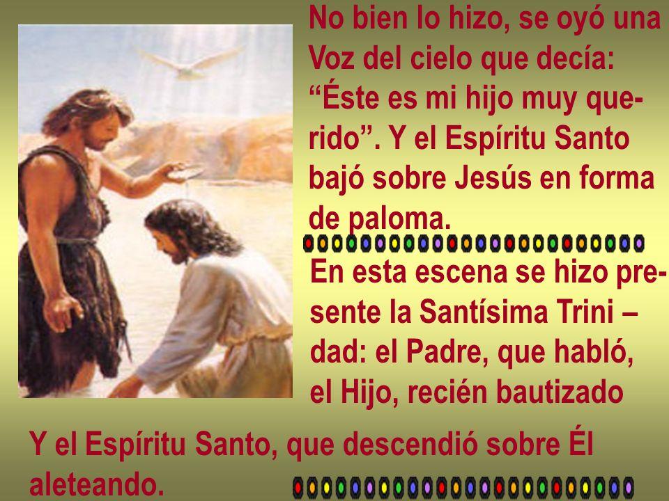 No bien lo hizo, se oyó una Voz del cielo que decía: Éste es mi hijo muy que- rido. Y el Espíritu Santo bajó sobre Jesús en forma de paloma. En esta e