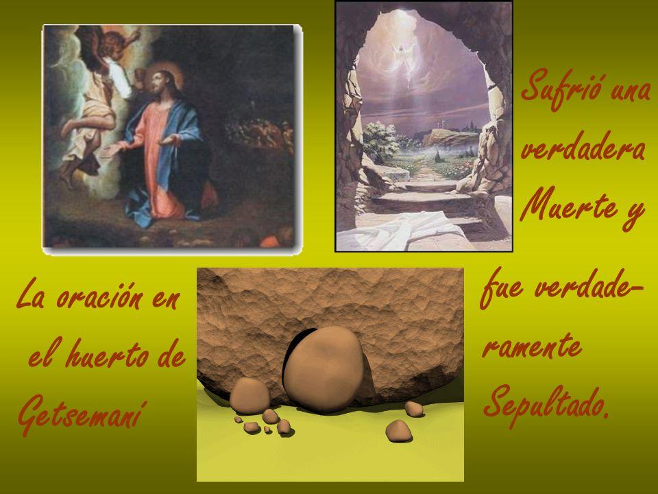 La oración en el huerto de Getsemaní Sufrió una verdadera Muerte y fue verdade- ramente Sepultado.