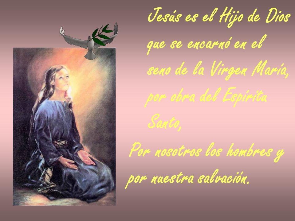 Jesús es el Hijo de Dios que se encarnó en el seno de la Virgen María, por obra del Espíritu Santo, Por nosotros los hombres y por nuestra salvación.