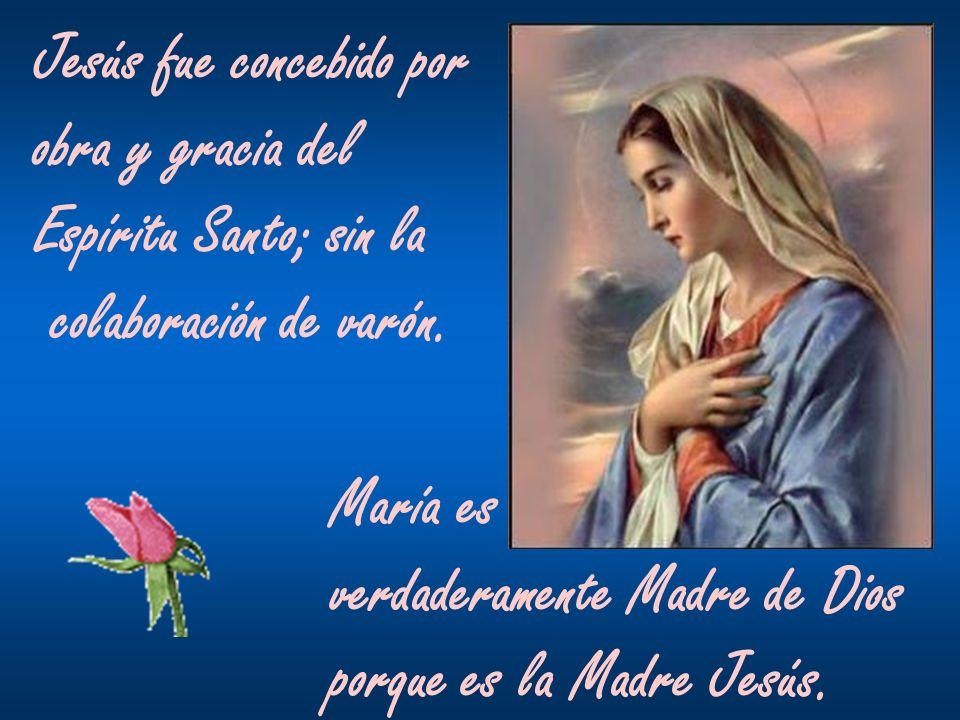 Jesús fue concebido por obra y gracia del Espíritu Santo; sin la colaboración de varón. María es verdaderamente Madre de Dios porque es la Madre Jesús