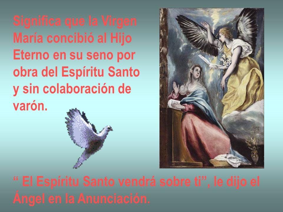 Significa que la Virgen María concibió al Hijo Eterno en su seno por obra del Espíritu Santo y sin colaboración de varón. El Espíritu Santo vendrá sob