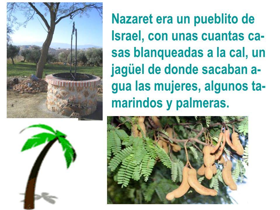 Nazaret era un pueblito de Israel, con unas cuantas ca- sas blanqueadas a la cal, un jagüel de donde sacaban a- gua las mujeres, algunos ta- marindos
