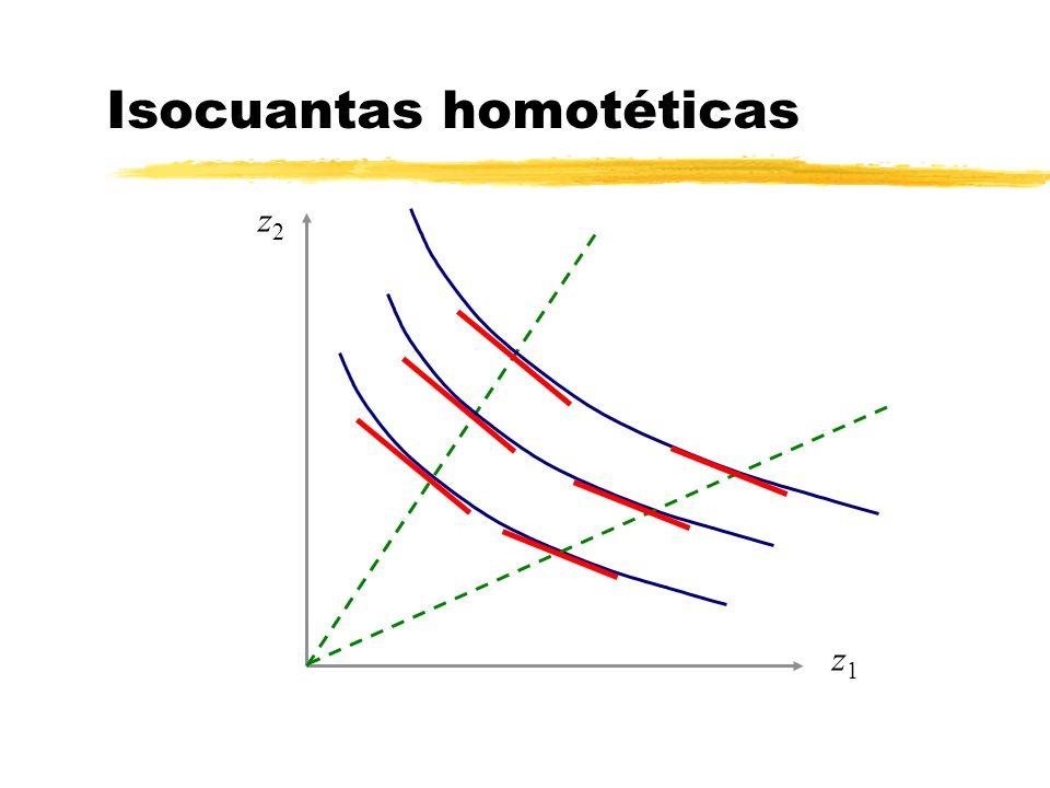 z1z1 z2z2 Isocuantas homotéticas