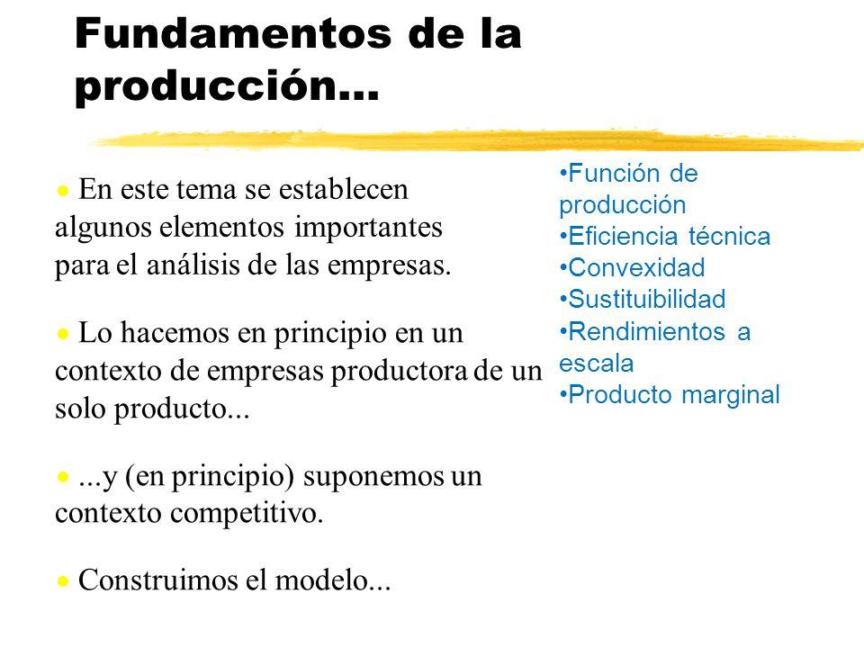 En este tema se establecen algunos elementos importantes para el análisis de las empresas. Lo hacemos en principio en un contexto de empresas producto