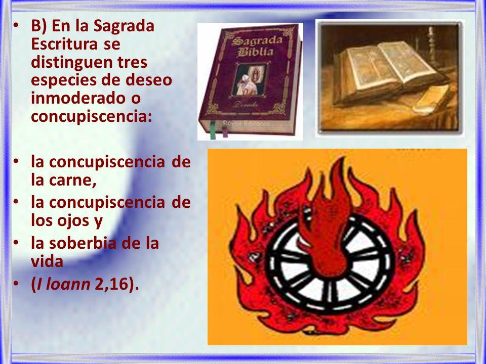 B) En la Sagrada Escritura se distinguen tres especies de deseo inmoderado o concupiscencia: la concupiscencia de la carne, la concupiscencia de los o