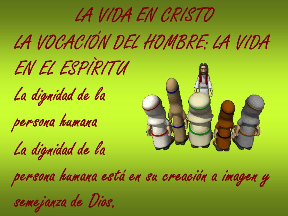 LA VIDA EN CRISTO LA VOCACIÓN DEL HOMBRE: LA VIDA EN EL ESPÌRITU La dignidad de la persona humana La dignidad de la persona humana está en su creación
