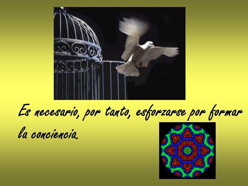 Es necesario, por tanto, esforzarse por formar la conciencia.