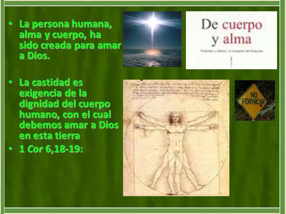La persona humana, alma y cuerpo, ha sido creada para amar a Dios. La persona humana, alma y cuerpo, ha sido creada para amar a Dios. La castidad es e