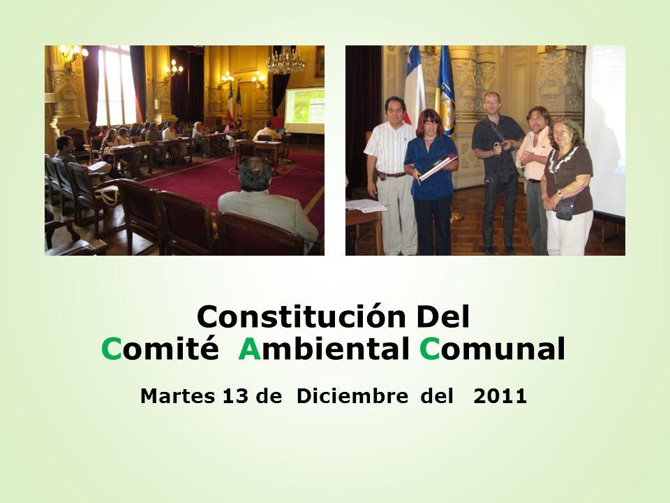 Constitución Del Comité Ambiental Comunal Martes 13 de Diciembre del 2011