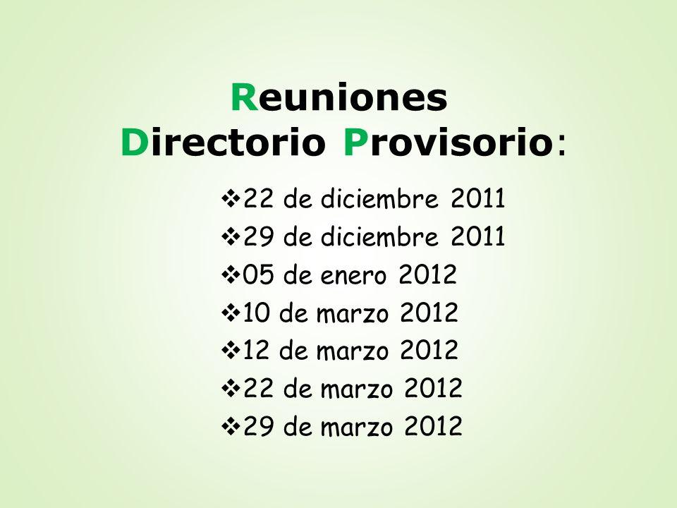 Reuniones Directorio Provisorio: 22 de diciembre 2011 29 de diciembre 2011 05 de enero 2012 10 de marzo 2012 12 de marzo 2012 22 de marzo 2012 29 de m