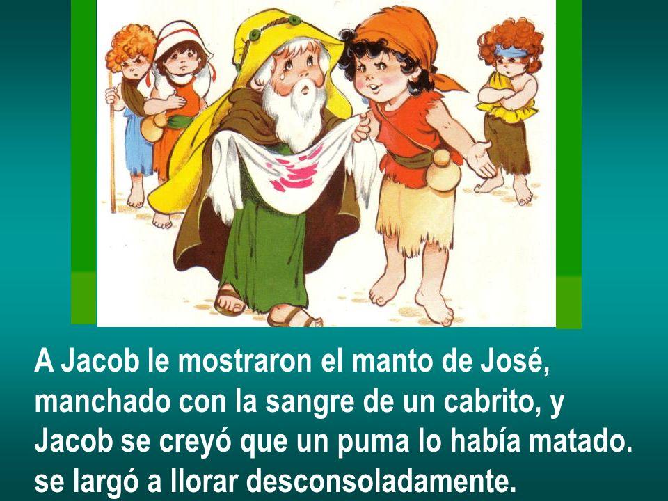 A Jacob le mostraron el manto de José, manchado con la sangre de un cabrito, y Jacob se creyó que un puma lo había matado. se largó a llorar desconsol