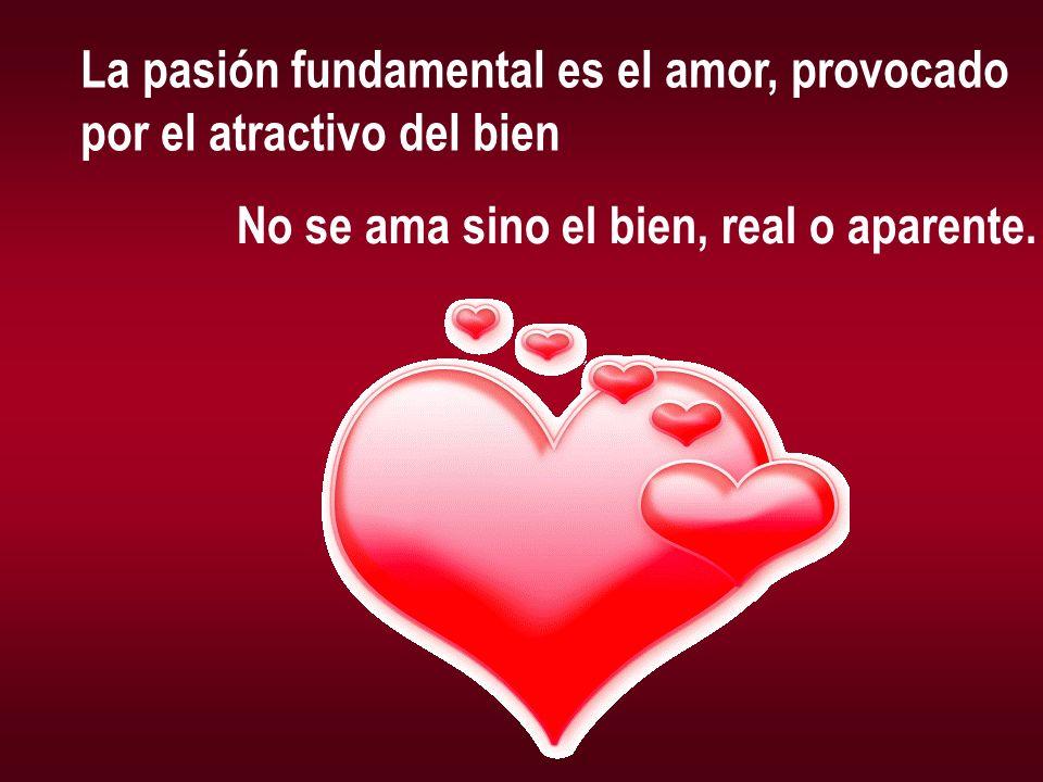 La pasión fundamental es el amor, provocado por el atractivo del bien No se ama sino el bien, real o aparente.