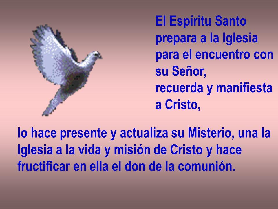 El Espíritu Santo prepara a la Iglesia para el encuentro con su Señor, recuerda y manifiesta a Cristo, lo hace presente y actualiza su Misterio, una l