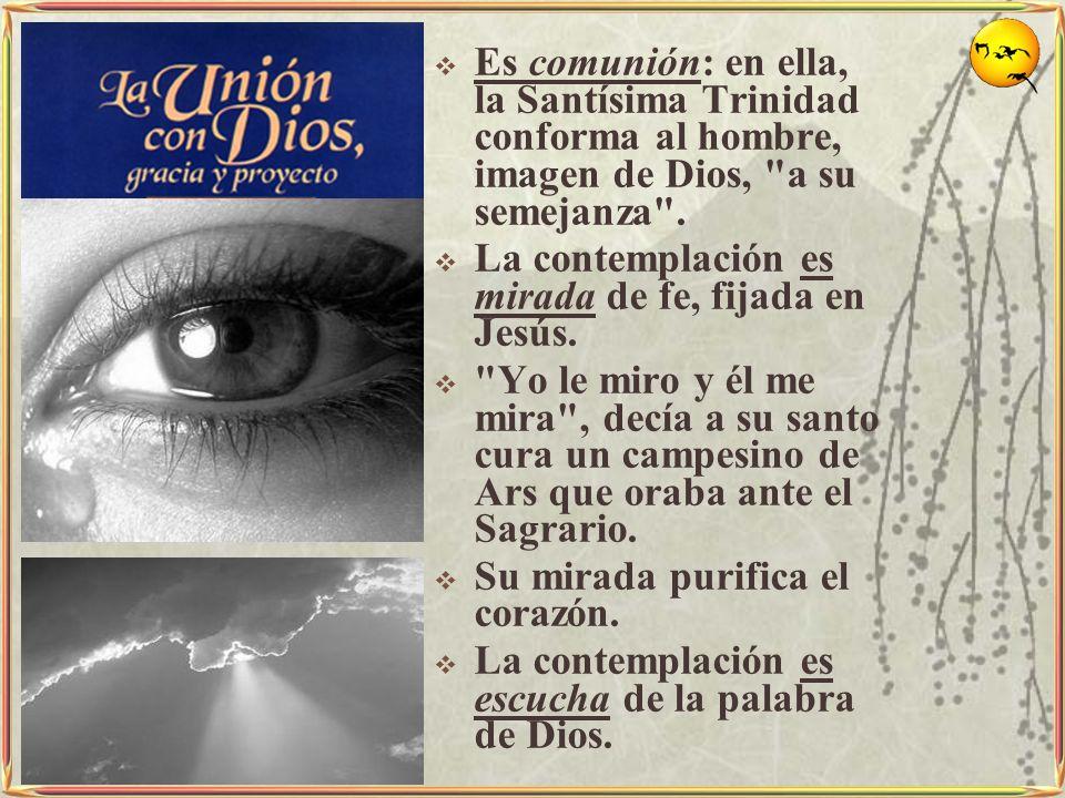 Es comunión: en ella, la Santísima Trinidad conforma al hombre, imagen de Dios,