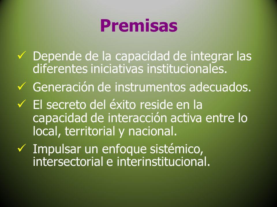 Premisas Depende de la capacidad de integrar las diferentes iniciativas institucionales. Generación de instrumentos adecuados. El secreto del éxito re