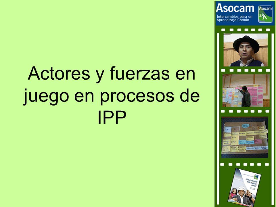 Actores y fuerzas en juego en procesos de IPP