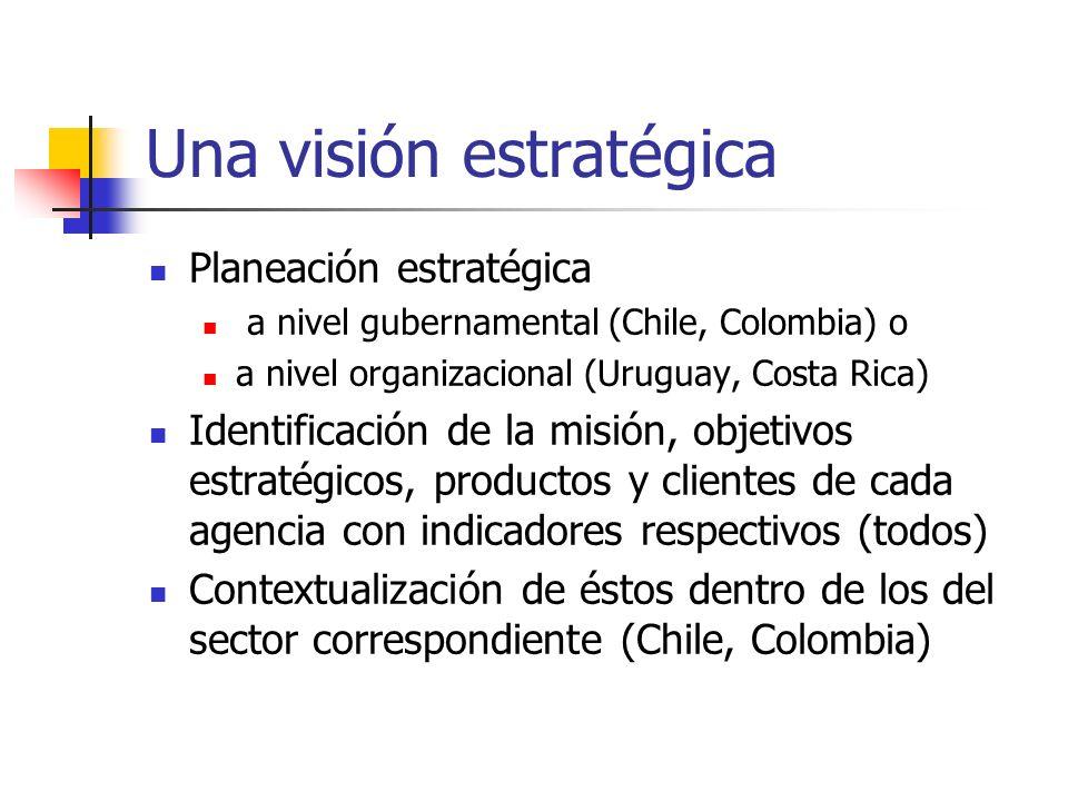 Una visión estratégica Planeación estratégica a nivel gubernamental (Chile, Colombia) o a nivel organizacional (Uruguay, Costa Rica) Identificación de