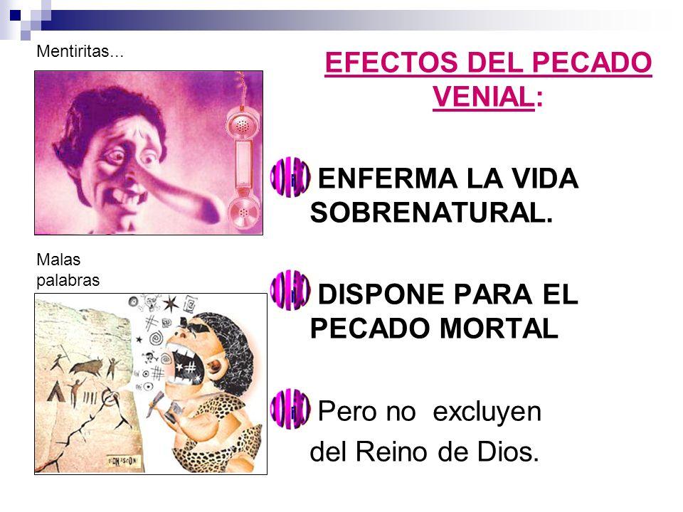 EFECTOS DEL PECADO VENIAL: ENFERMA LA VIDA SOBRENATURAL. DISPONE PARA EL PECADO MORTAL Pero no excluyen del Reino de Dios. Mentiritas... Malas palabra