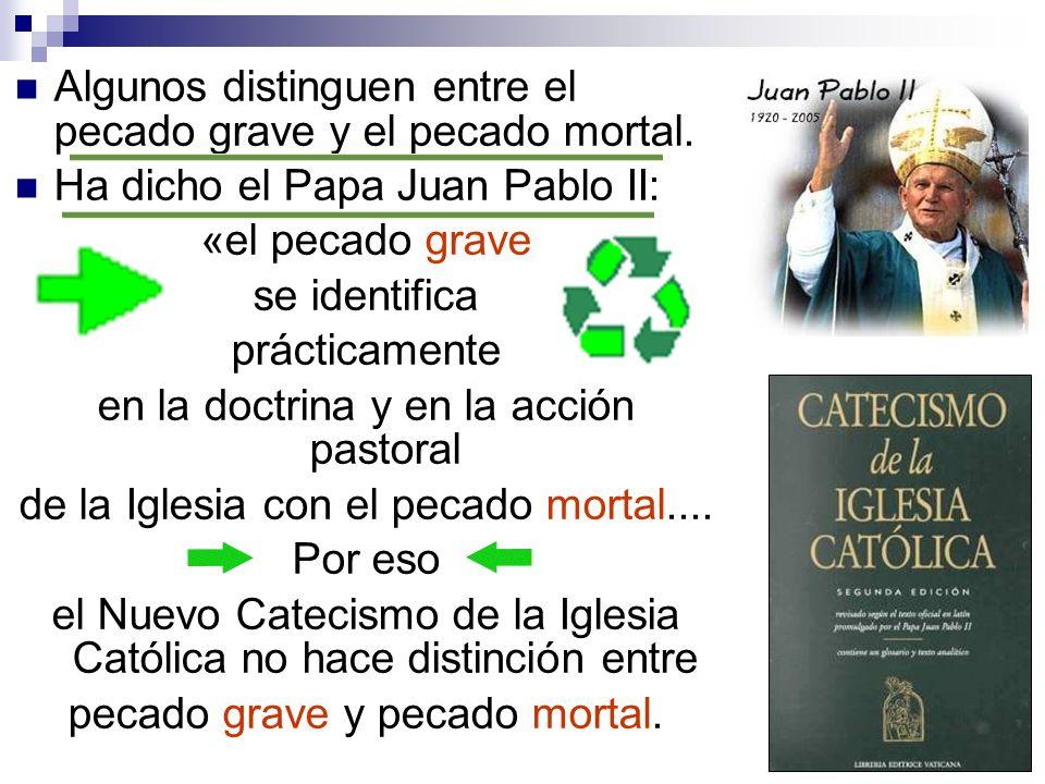 Algunos distinguen entre el pecado grave y el pecado mortal. Ha dicho el Papa Juan Pablo II: «el pecado grave se identifica prácticamente en la doctri