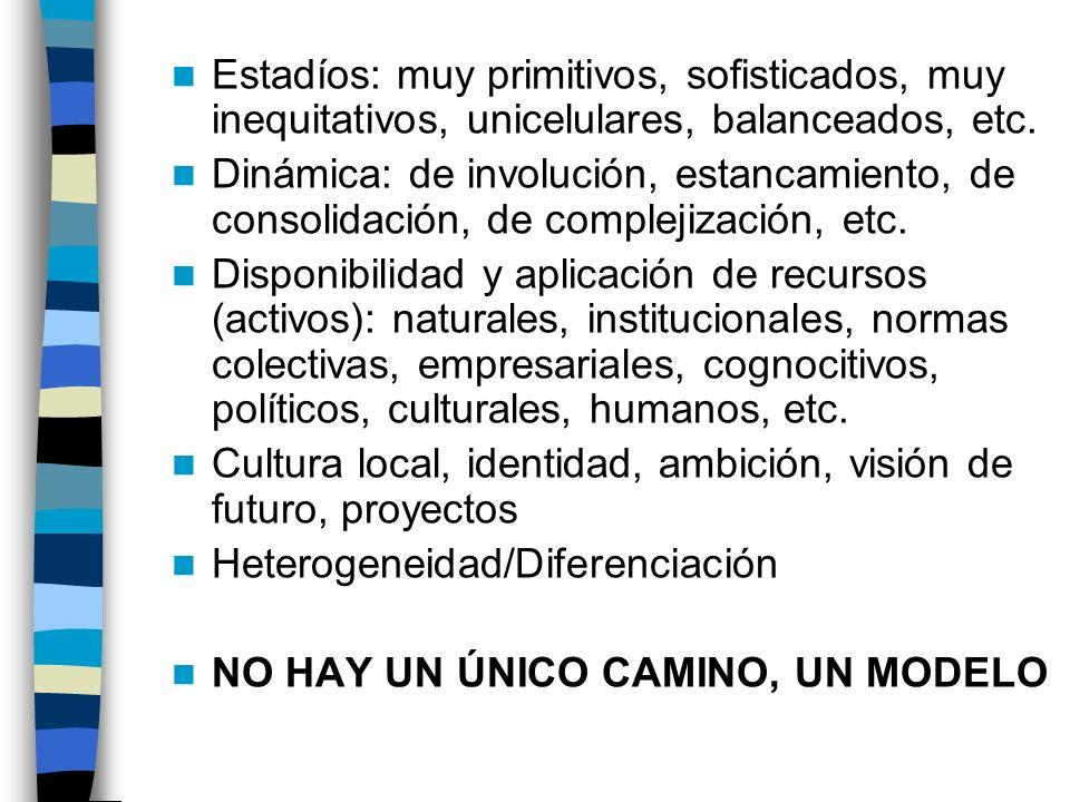 Aclaraciones conceptuales iniciales El desarrollo económico de una comunidad local/regional es un PROCESO en el que intervienen múltiples FACTORES y D