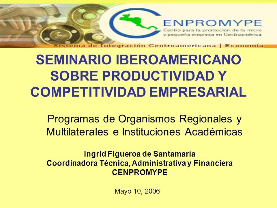 SEMINARIO IBEROAMERICANO SOBRE PRODUCTIVIDAD Y COMPETITIVIDAD EMPRESARIAL Programas de Organismos Regionales y Multilaterales e Instituciones Académic