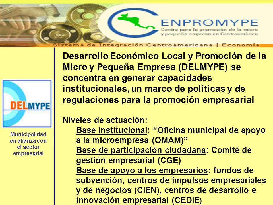 Desarrollo Económico Local y Promoción de la Micro y Pequeña Empresa (DELMYPE) se concentra en generar capacidades institucionales, un marco de políti
