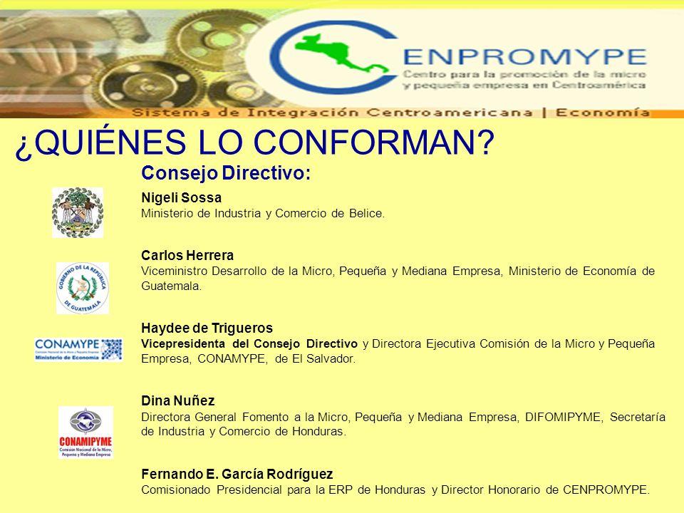 Consejo Directivo: Nigeli Sossa Ministerio de Industria y Comercio de Belice. Carlos Herrera Viceministro Desarrollo de la Micro, Pequeña y Mediana Em