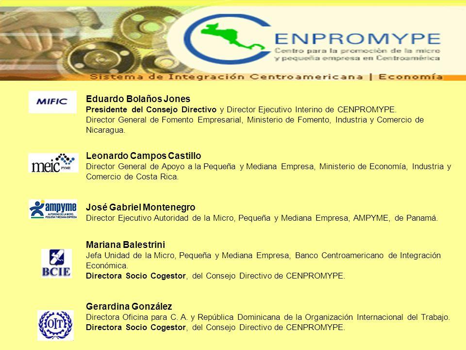 Eduardo Bolaños Jones Presidente del Consejo Directivo y Director Ejecutivo Interino de CENPROMYPE. Director General de Fomento Empresarial, Ministeri