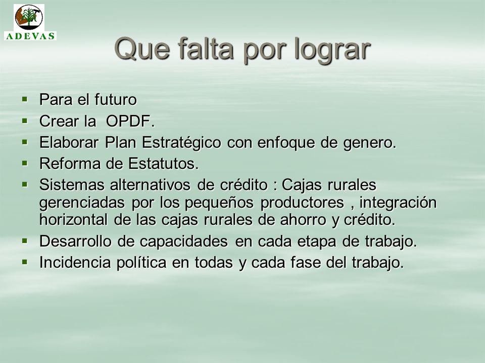 Que falta por lograr Para el futuro Para el futuro Crear la OPDF. Crear la OPDF. Elaborar Plan Estratégico con enfoque de genero. Elaborar Plan Estrat