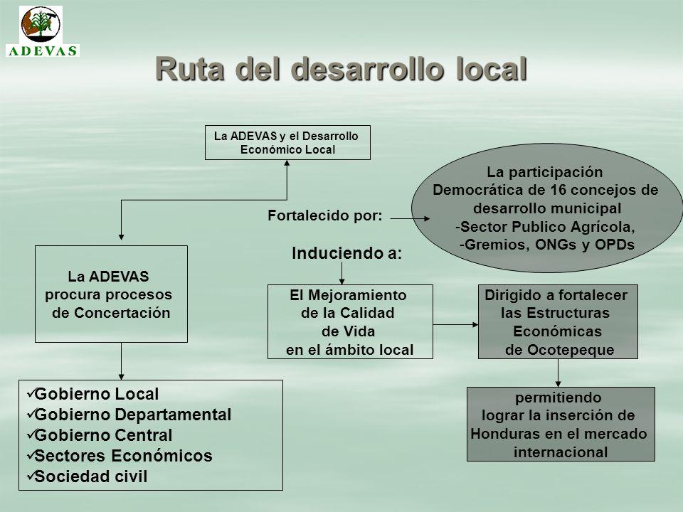 Ruta del desarrollo local La ADEVAS y el Desarrollo Económico Local La ADEVAS procura procesos de Concertación Gobierno Local Gobierno Departamental G