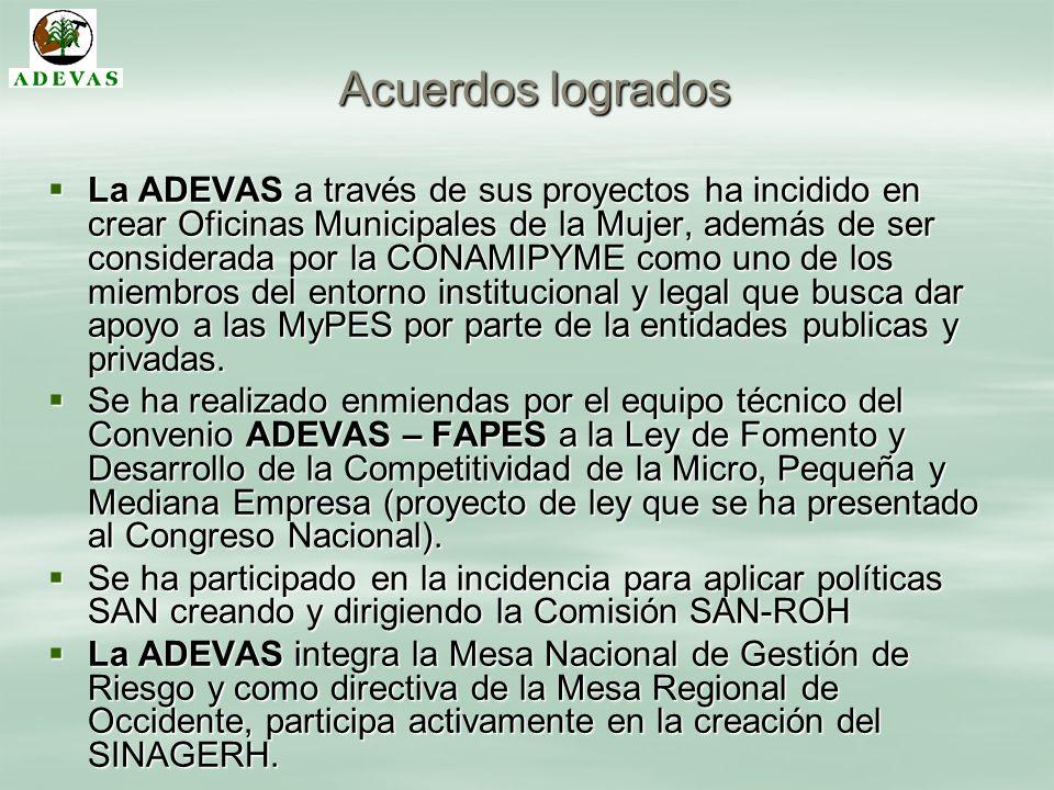 Acuerdos logrados La ADEVAS a través de sus proyectos ha incidido en crear Oficinas Municipales de la Mujer, además de ser considerada por la CONAMIPY
