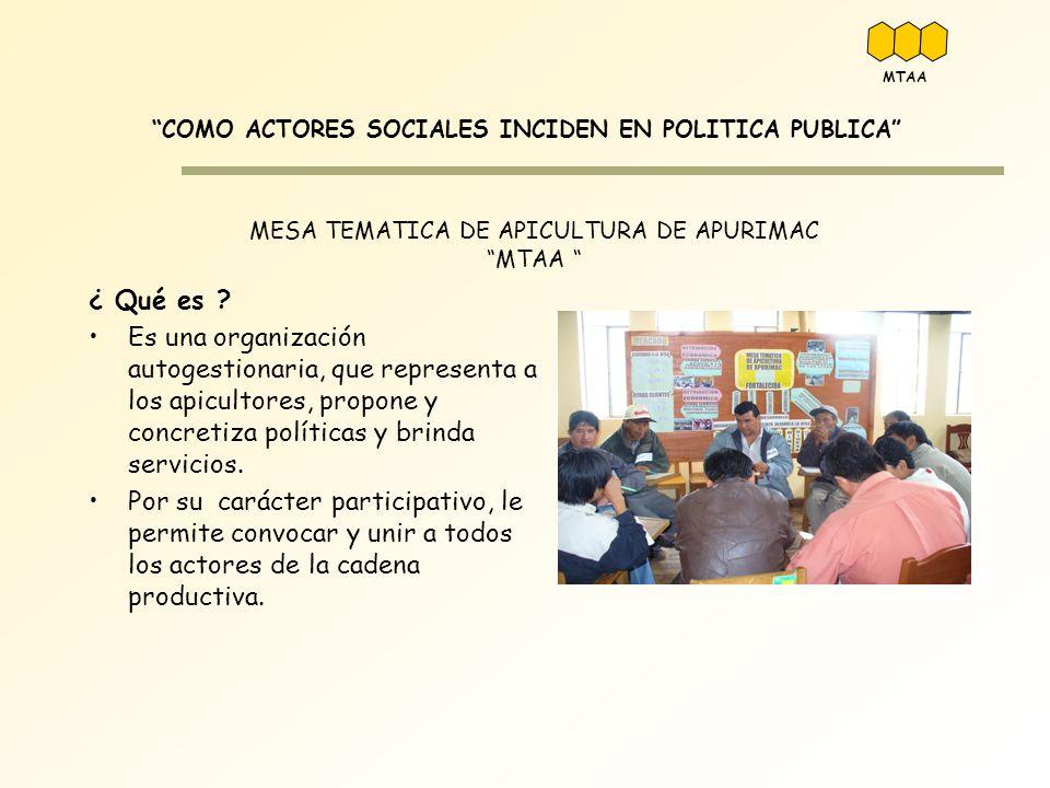 MESA TEMATICA DE APICULTURA DE APURIMAC MTAA COMO ACTORES SOCIALES INCIDEN EN POLITICA PUBLICA ¿ Qué es ? Es una organización autogestionaria, que rep